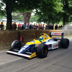 massa goodwood